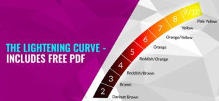 The Lightening Curve – Includes Free PDF