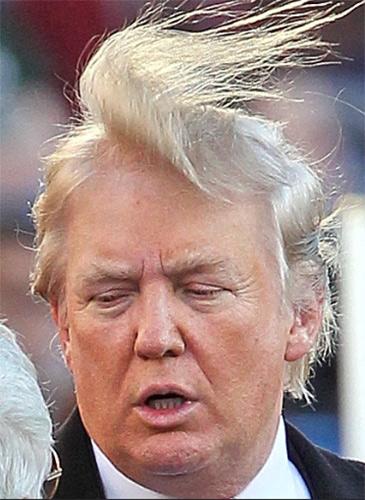 Bad Haircut, Bad Hairstyles, Mens Bad Hairstyles, Mens Haircut, Donald  Trump,